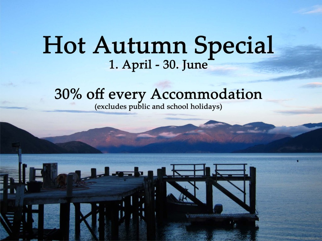 hot_deal_autumn_compressed